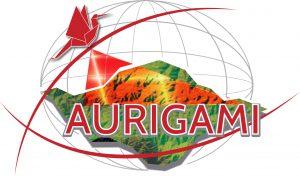 Logo AURIGAMI
